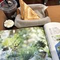 Photos: 2018.11.27 HONEY COFFEEのホットサンドランチ