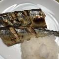 Photos: 2019.9.16 秋刀魚塩焼き