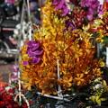 写真: お花屋さん(ホーチミン)