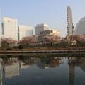 写真: 横浜の朝