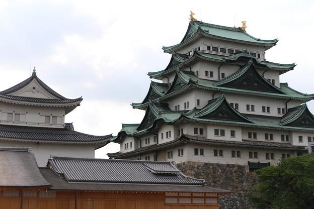 Photos: 名古屋城