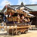 写真: 神戸 だんじり祭り
