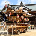Photos: 神戸 だんじり祭り