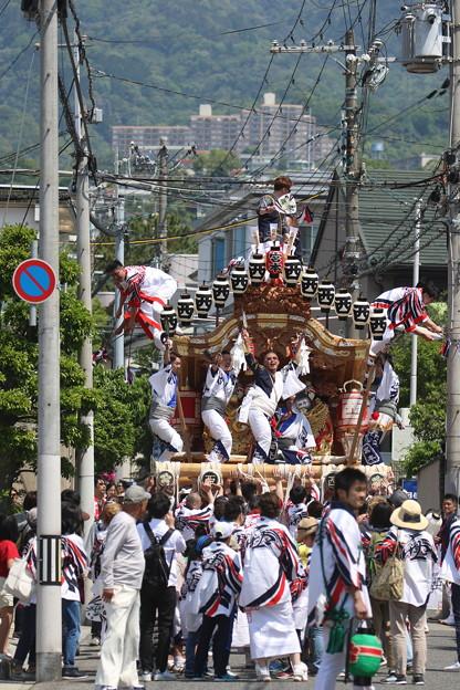 神戸 だんじり祭り