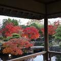 姫路城西御屋敷跡庭園・好古園