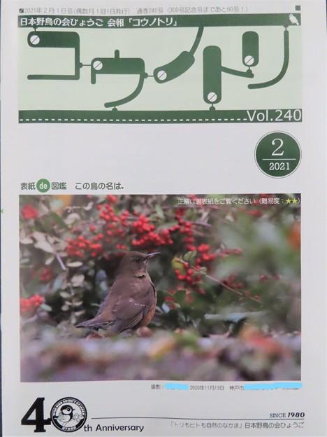 会報「コウノトリ」Vol.240 2021年2月号 表紙