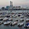 Photos: ヨットハーバーと火力発電所