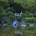 Photos: 長閑な公園1
