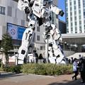 Photos: ガンダムとザク