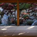 Photos: 宝徳寺の紅葉