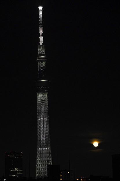 小さな満月