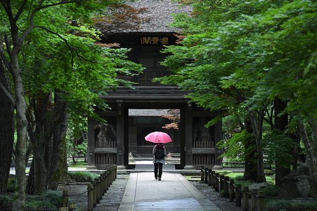 雨 やんでますよ~^^