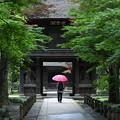 Photos: 雨 やんでますよ~^^