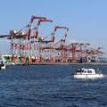 Photos: キリンと船