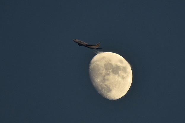 AIR DOとお月さん