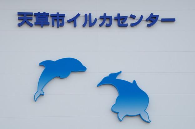 002_道の駅天草市イルカセンター_1