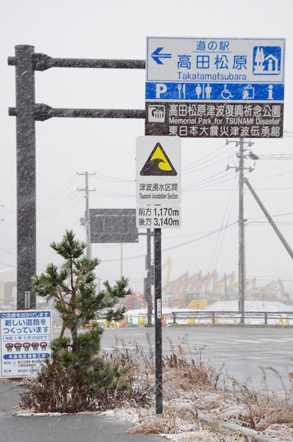 Photos: 002_道の駅高田松原