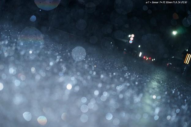 (4-5)DSC03208raw WB=昼白色蛍光灯 -0.67EV 1024x682