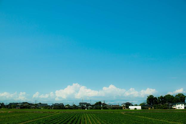 田舎の空はとてもきれい