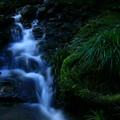 写真: 5億年前の滝  小木津山自然公園