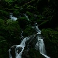 写真: 生田の滝  出会いの滝
