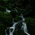 Photos: 生田の滝  出会いの滝
