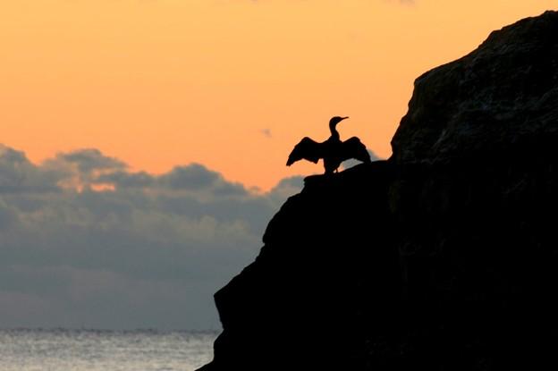 Photos: 168 鵜の岬 伊師浜海岸