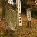 Photos: 160 大原道標