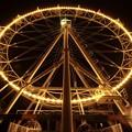 写真: 083 かみねレジャーランド 夜の大観覧車