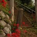写真: 574 坊崎の天王様