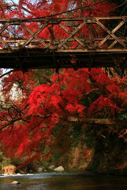 Photos: 560 中里の吊り橋