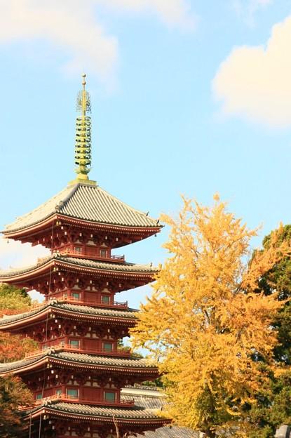 Photos: 192 十王 法鷲院の五重塔