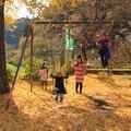 Photos: 125 たかはら自然塾