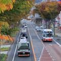 Photos: 7 多賀のけやき並木