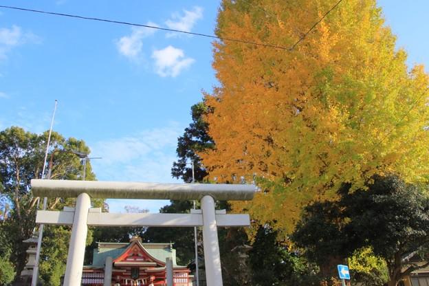 559 助川鹿島神社