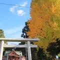 667 助川鹿嶋神社