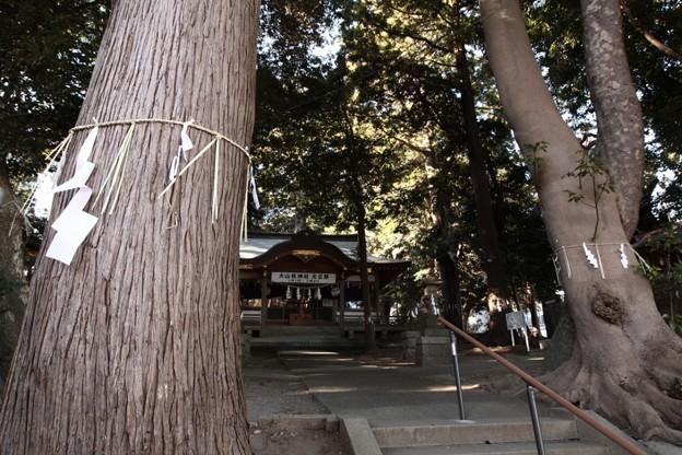 865 大山祇神社