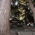 Photos: 865 大山祇神社