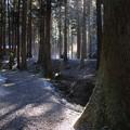 写真: 冬の御岩神社