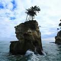 Photos: 281 とり島