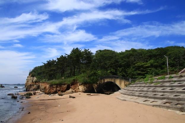 205 小貝浜緑地