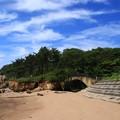 Photos: 小貝浜緑地