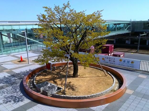 Photos: 005 大煙突 円形ベンチ
