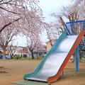 Photos: 263 デカい滑り台 しゅくひがし児童公園