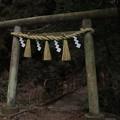 Photos: 369  神峰神社 一の鳥居