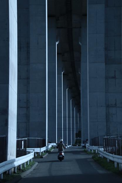 253 常磐自動車道 高架下