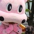 Photos: 066 かみねっちょ