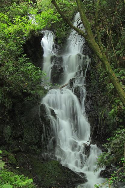 367 陰作沢の滝