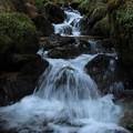 465 深萩川の渓流瀑