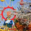 Photos: 072 かみね遊園地